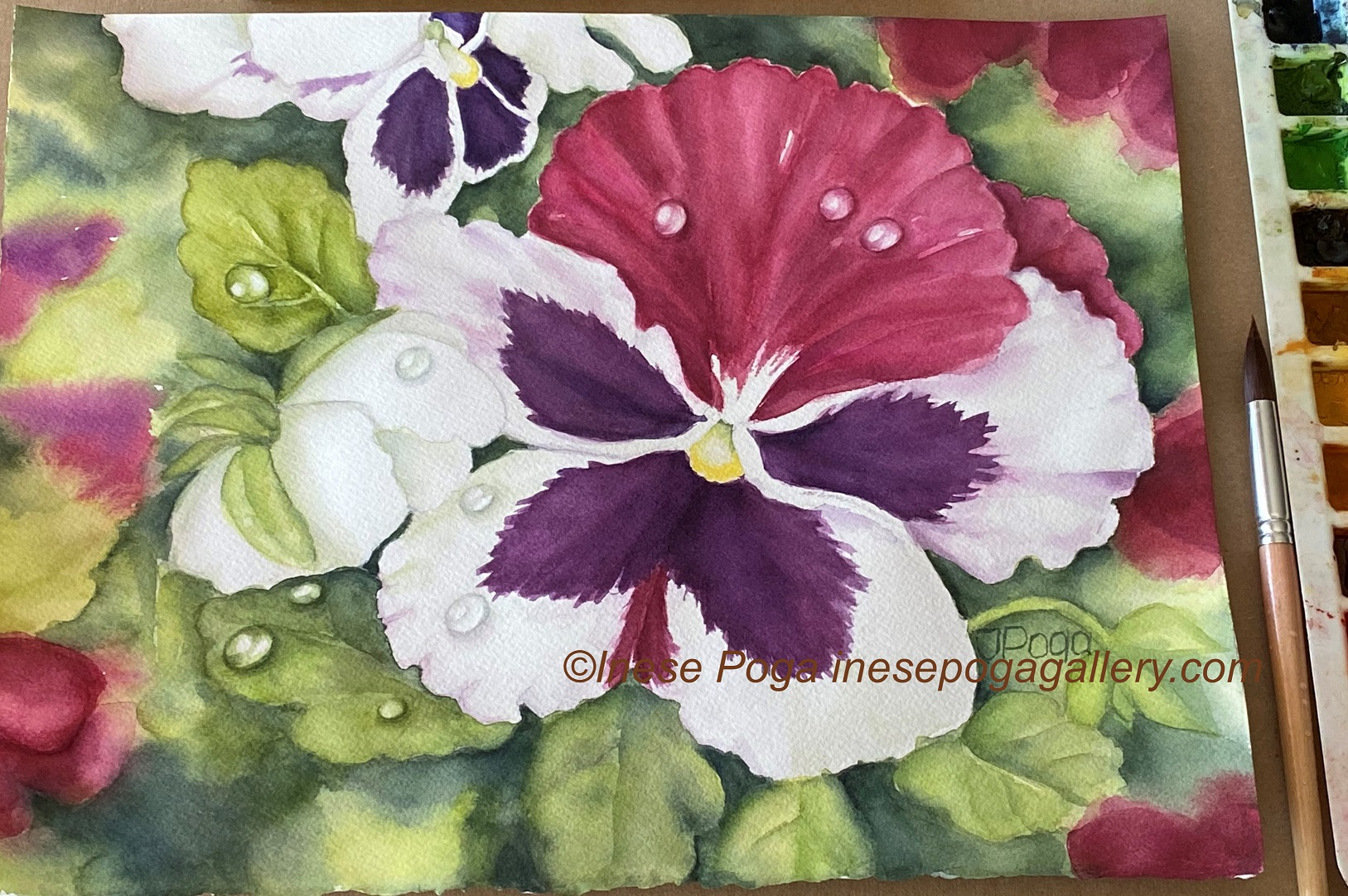 Pink and purple summer flowers with painting steps