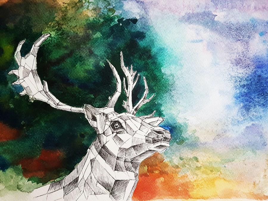 Forest skills deer