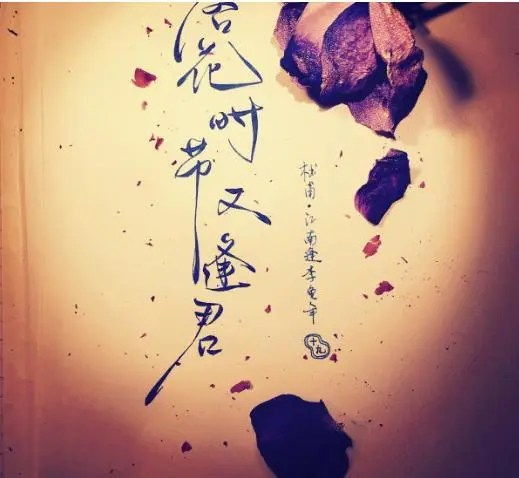 """""""落花時節又逢君""""時常聽到,可你知道這是杜甫為誰寫的嗎?_騰訊新聞"""