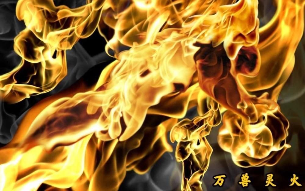 《斗破蒼穹》23種異火。你都知道哪幾種?_騰訊新聞