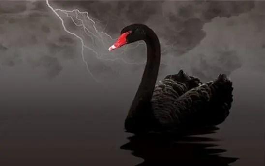 三百多年歷史的中藥巨頭遭遇黑天鵝事件