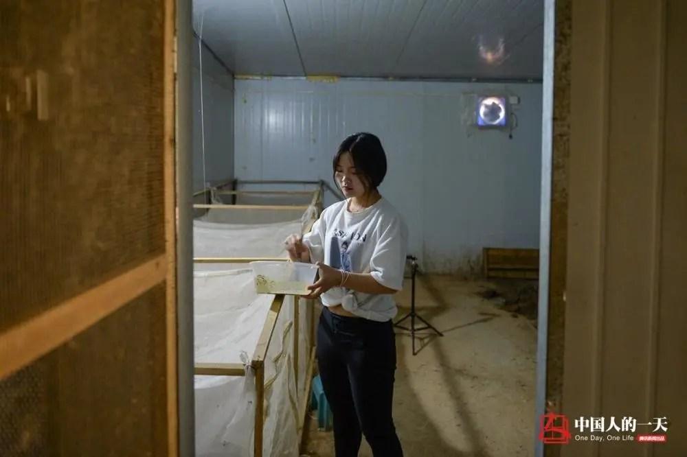 中国人的一天:安稳工作供不起儿子上学 95后单亲妈妈乡下养蛇直播
