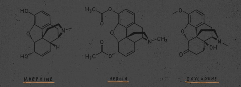 Chemical structure of various opioid drugs. Illustration by Ben Chlapek