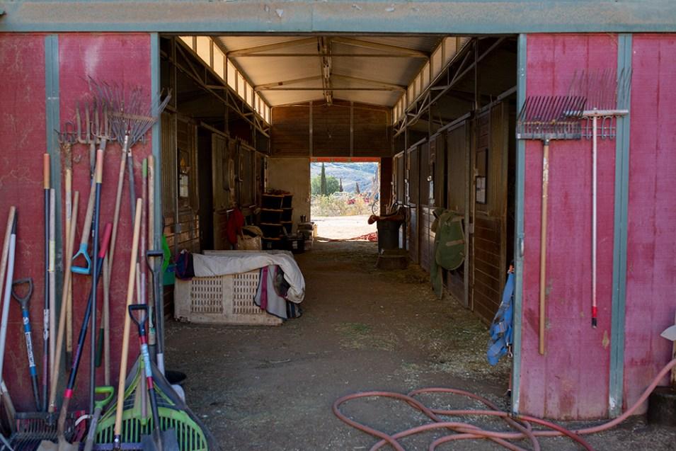 HiCaliber Horse Rescue ranch
