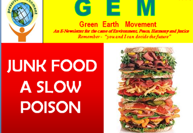 Gem-ppt-3 Junk food-slow poison