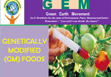 Gem ppt-14-genetically modified foods