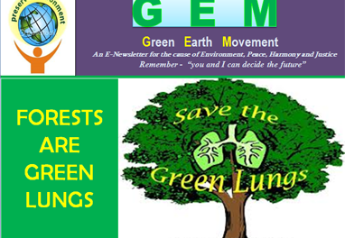 Gem ppt-23-forests are green lungs