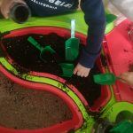 plantem llenties a llar infants bambi