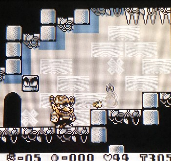 Wario Land - Dragon Hat