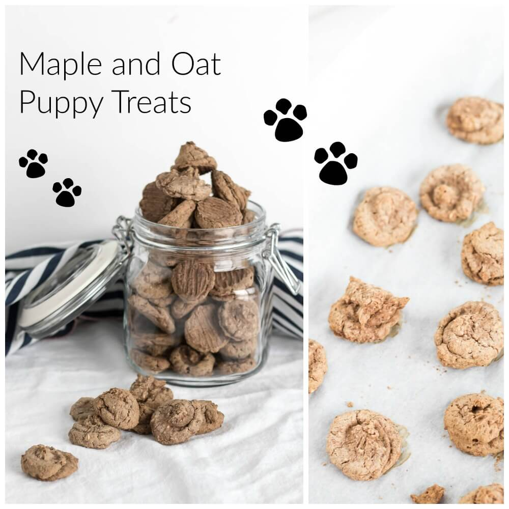 Maple Oat Puppy Treats | infinebalance.com #recipe #dog