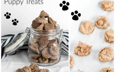 Maple Oat Puppy Treats