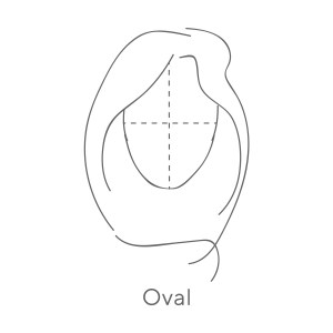 Oval (dotted lines) 2