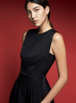 Style Theory AKINN Crew Neck Fitted Swing Dress in Black