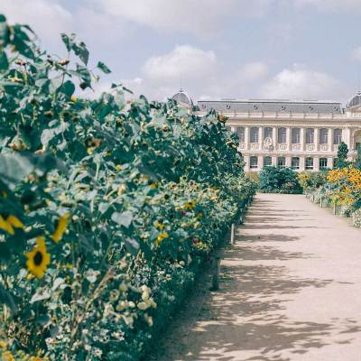 París: Ordenan confinamiento durante un mes por rebrote de COVID