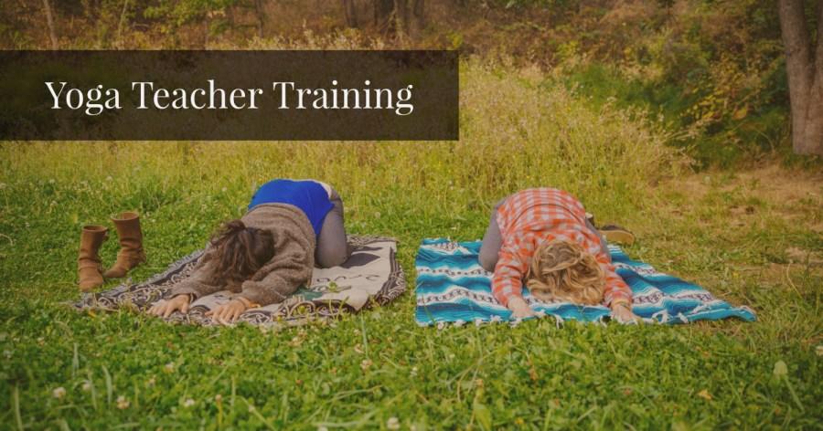 Infinite Source Yoga Teach Trainings