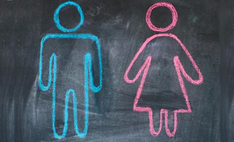 Genul gramatical și lingvistica genului