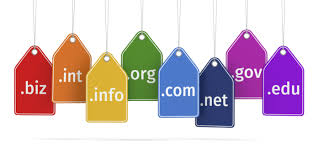 popular domain name extensions