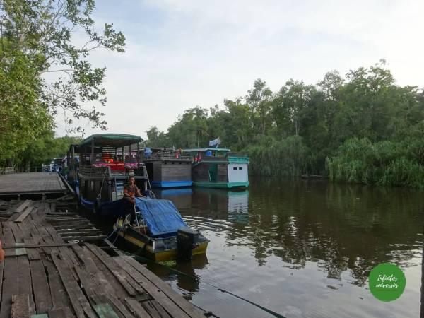 Embarcadero Tanjung Harapan orangutanes en borneo