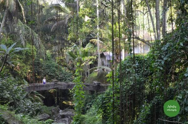 Pura Gunung Kawi Pura Gunung Kawi Tirta Empul el templo madre de Besakih, la cascada Tukad Cepung el templo Pura Kehen Penglipuran y su bosque de bambú