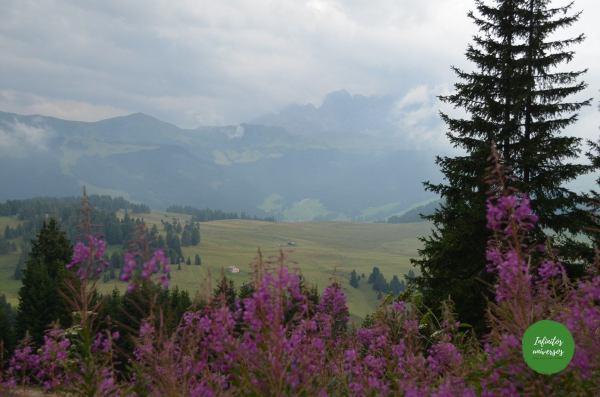 Alpe di Siusi - Que ver en los Dolomitas
