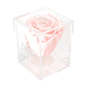 Produktbild Bridal Pink Single Acryl