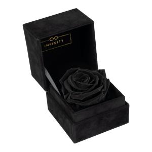 Single Velvet Black Beauty Produktbild