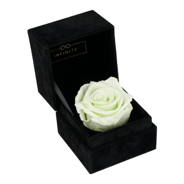 Single Velvet Minty Green Produktbild