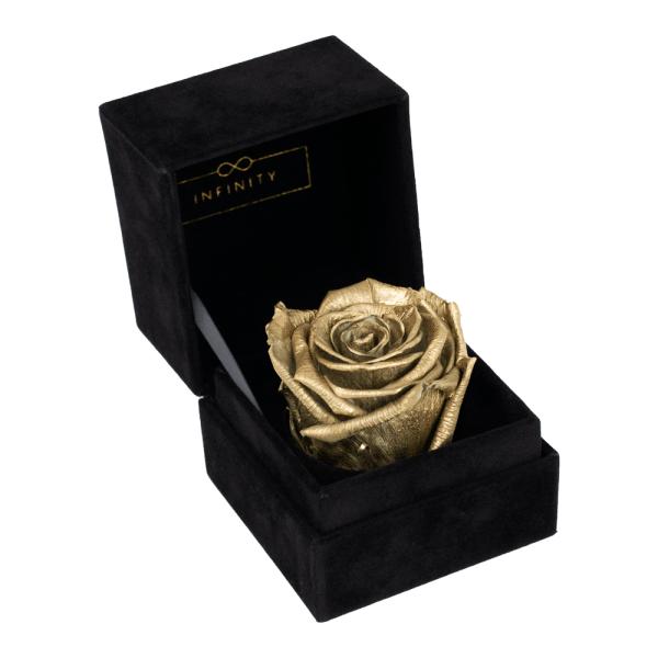 Single Velvet Gold Produktbild