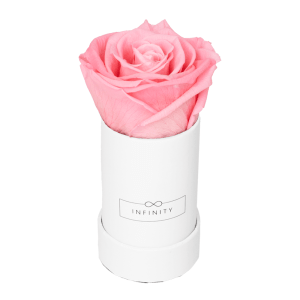 Produktbild Extra Small weiß Bridal Pink