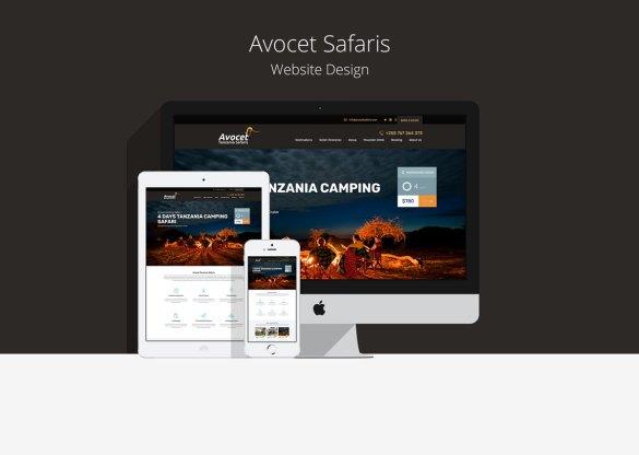 Avocet Safaris