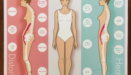 健康素肌美・健康姿勢美|静岡市のカイロプラクティック施術整体
