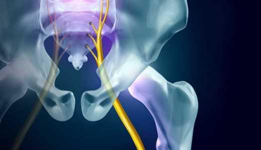 健康に過ごすために大切な腰の骨盤矯正|静岡市のカイロプラクティック整体院