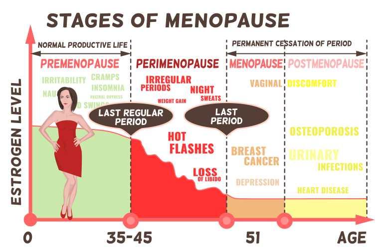 エストロゲンの分泌量遷移(女性の更年期)