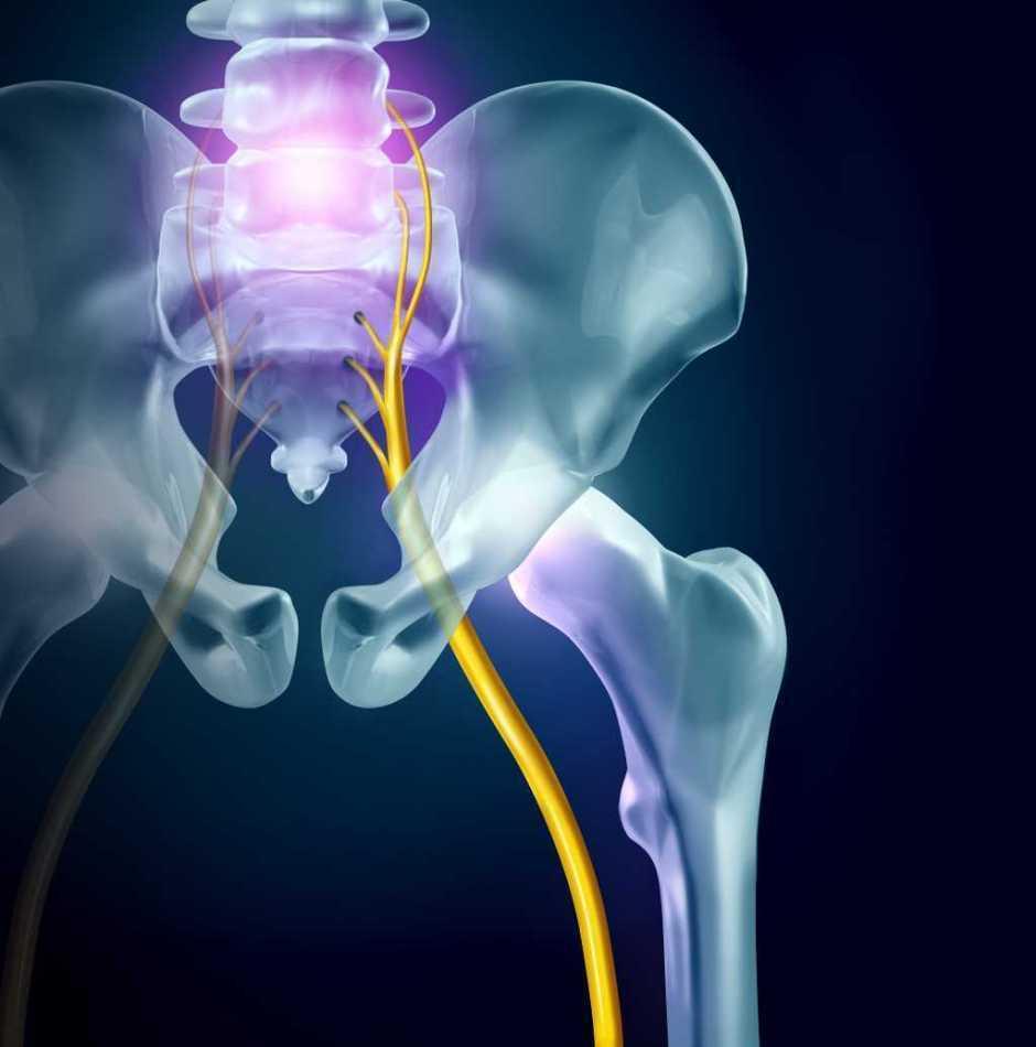大腰筋を鍛えてぽっこりお腹を改善しましょう。 | 【静岡市】の腰痛、座骨神経痛専門【カイロプラクティック整体院インフィニティ】