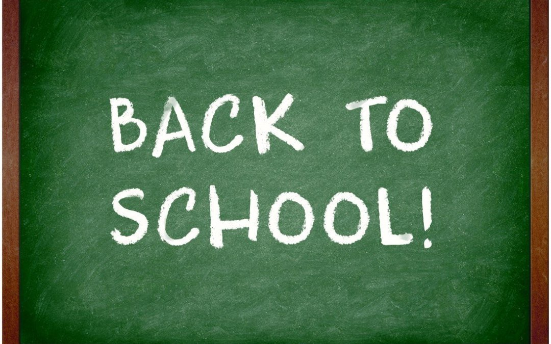 The Kids Are Back To School – It's Time For A New Project!