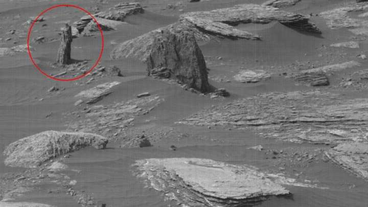 NASA image shows the remains of a petrified tree on Mars