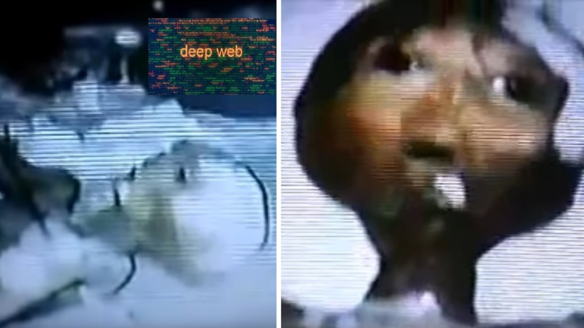 Controversy in the Networks: Extraterrestrial Recorded in Video in Switzerland, in 1992?