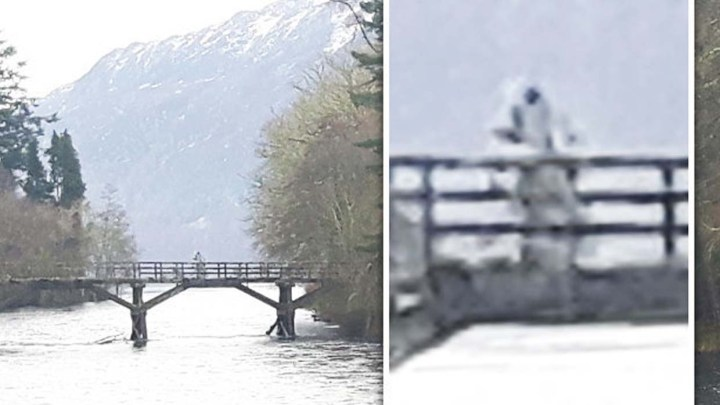 Photograph a humanoid similar to an astronaut on a bridge in Loch Ness