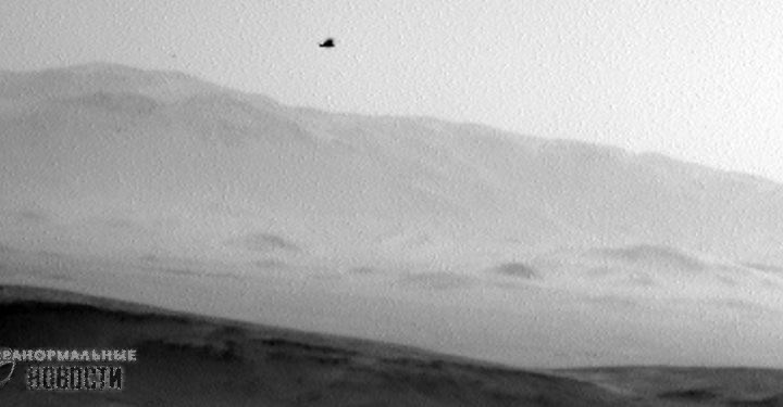 Images from  NASA Curiosity rover shows a bird on Mars
