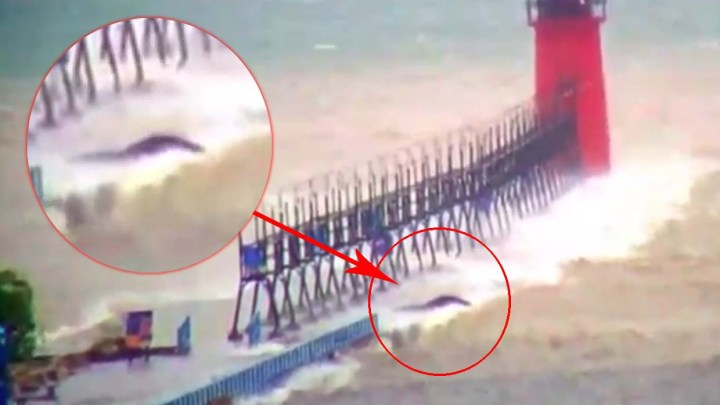 A mysterious creature appears on Lake Michigan during a storm