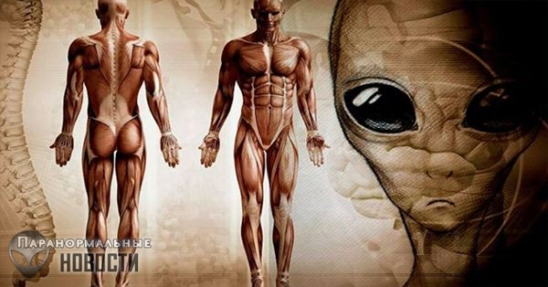 Prison Planet Theory: Humans are the Real Aliens on Earth