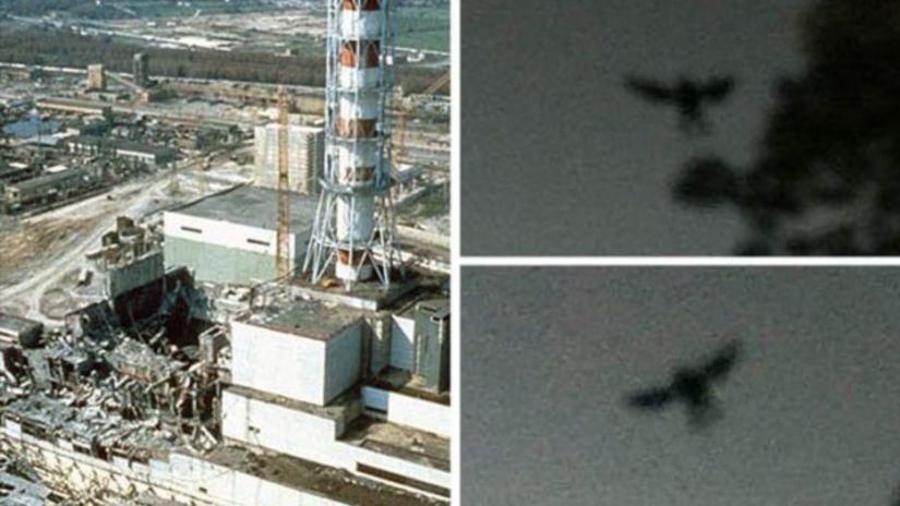 The Black Bird Of Chernobyl