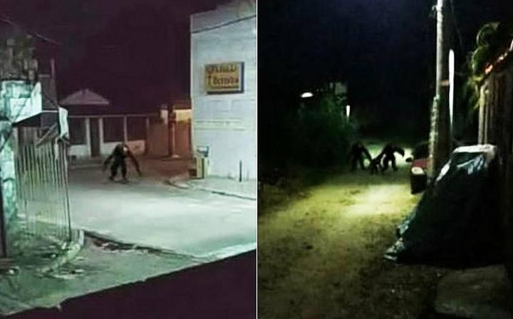 Rumor Of A Strange Creature Has Frightened Residents of Itaparica, Brazil
