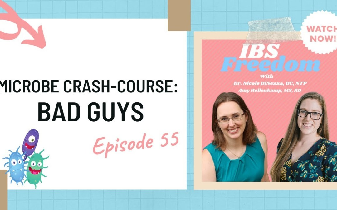 Microbe Crash Course: Bad Bacteria in the Gut from IBS Freedom Podcast #55