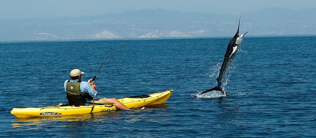 7 Essentials for Freshwater Kayak Fishing