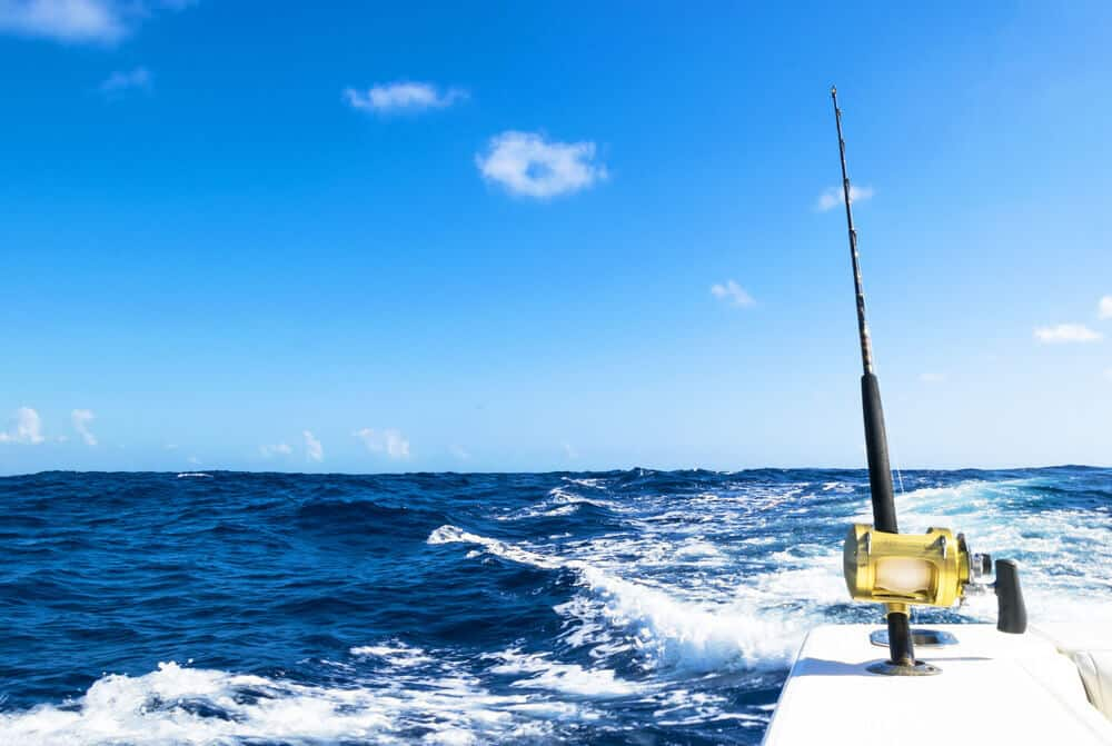 Beginners and Saltwater Fishing