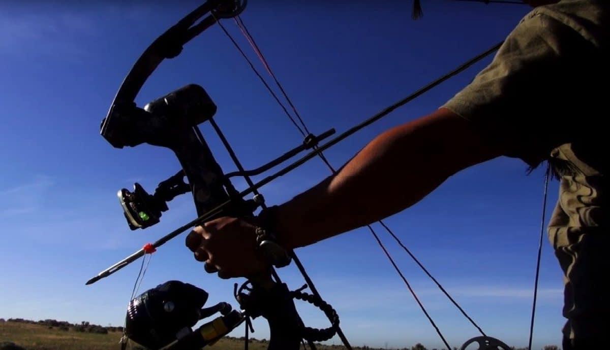 Best Bowfishing Reels in 2020 - Buyer's Guide