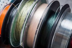 Monofilament vs. Braided Line