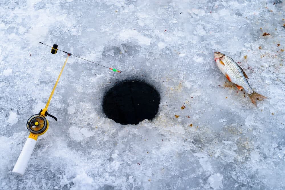 Ice Fishing Rods for Beginners