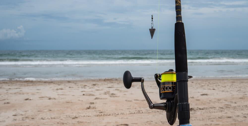 Surf Fishing guide